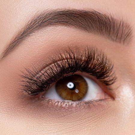 schoen-brows-800x572-01